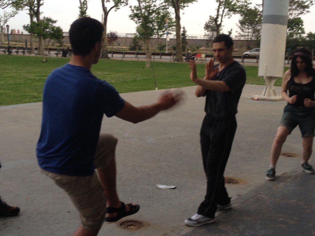 Wing Chun Training: June 3, 2014